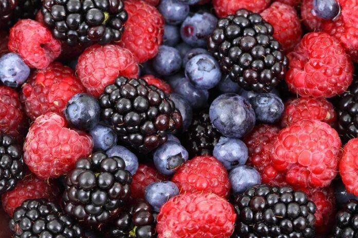 Drikkedunke med frugtbeholder giver frisk smag